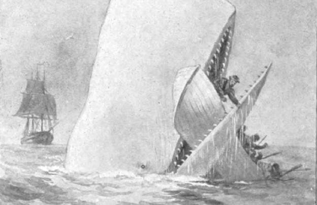 Ilustración de Moby-Dick, en una edición de la novela de 1892.